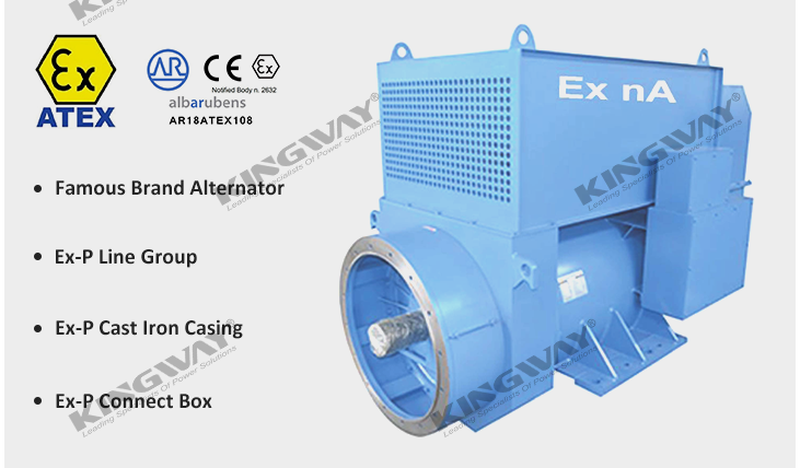 ATEX ex-proof Zone 2 Generator supplier