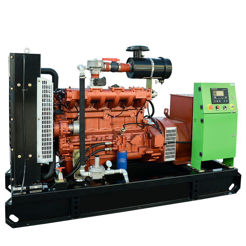 Commercial natural gas generator made in China